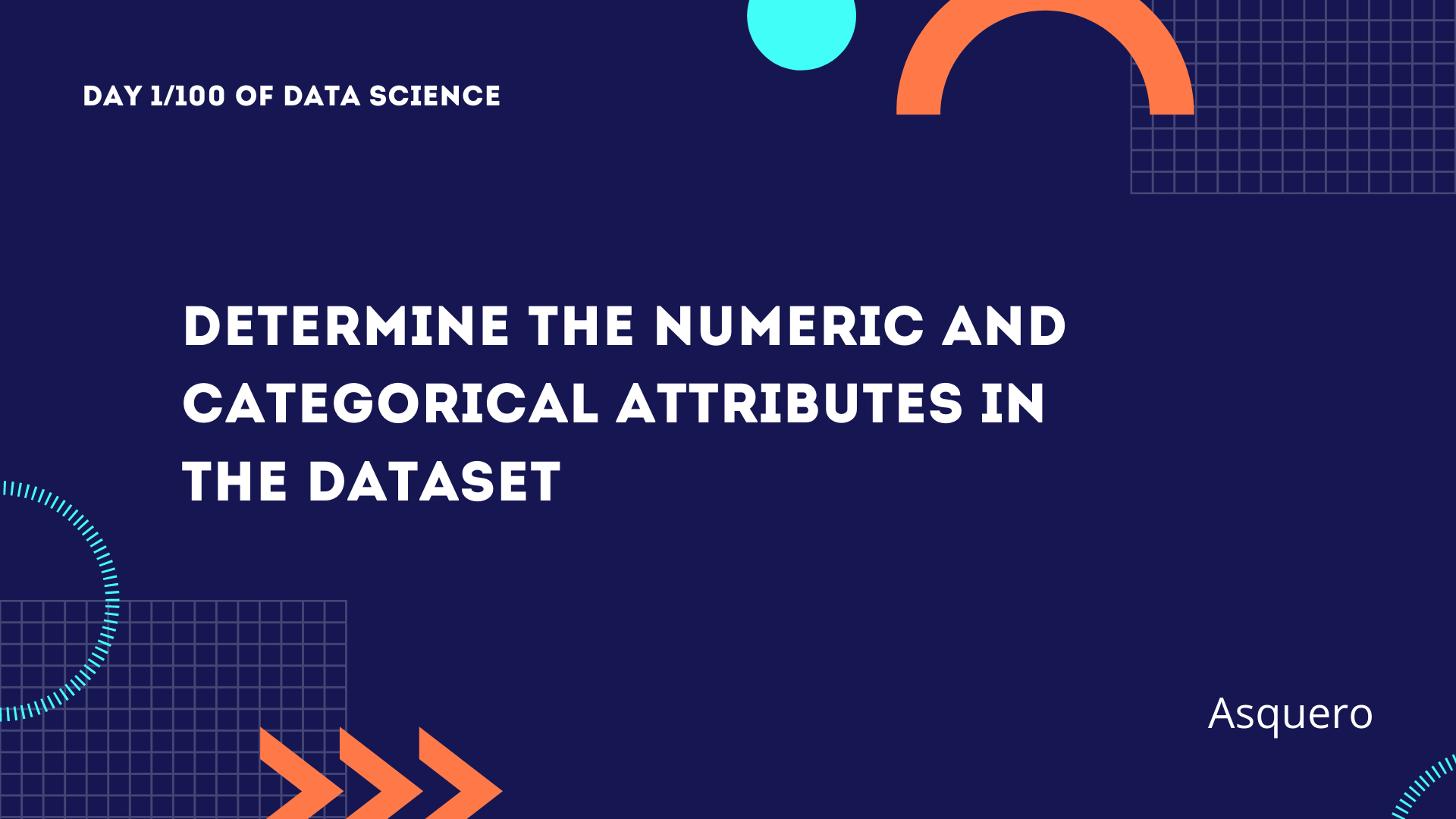 Determine the numeric and categorical attributes in the dataset