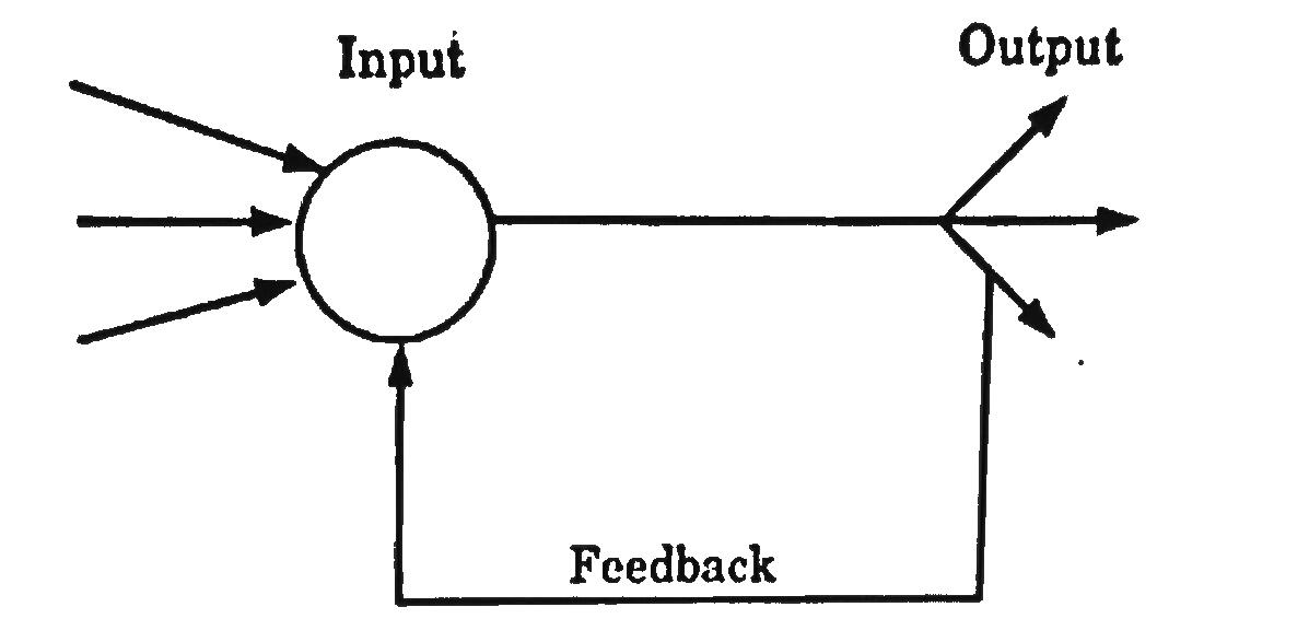 Single node with its own feedback